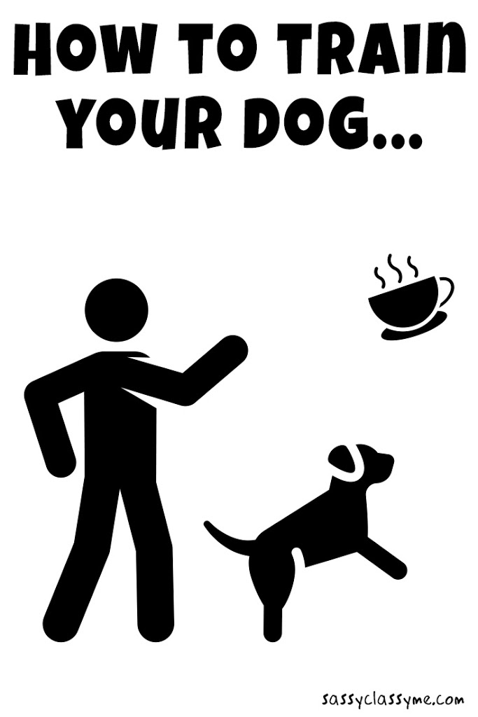 how to train your dog sassyclassyme