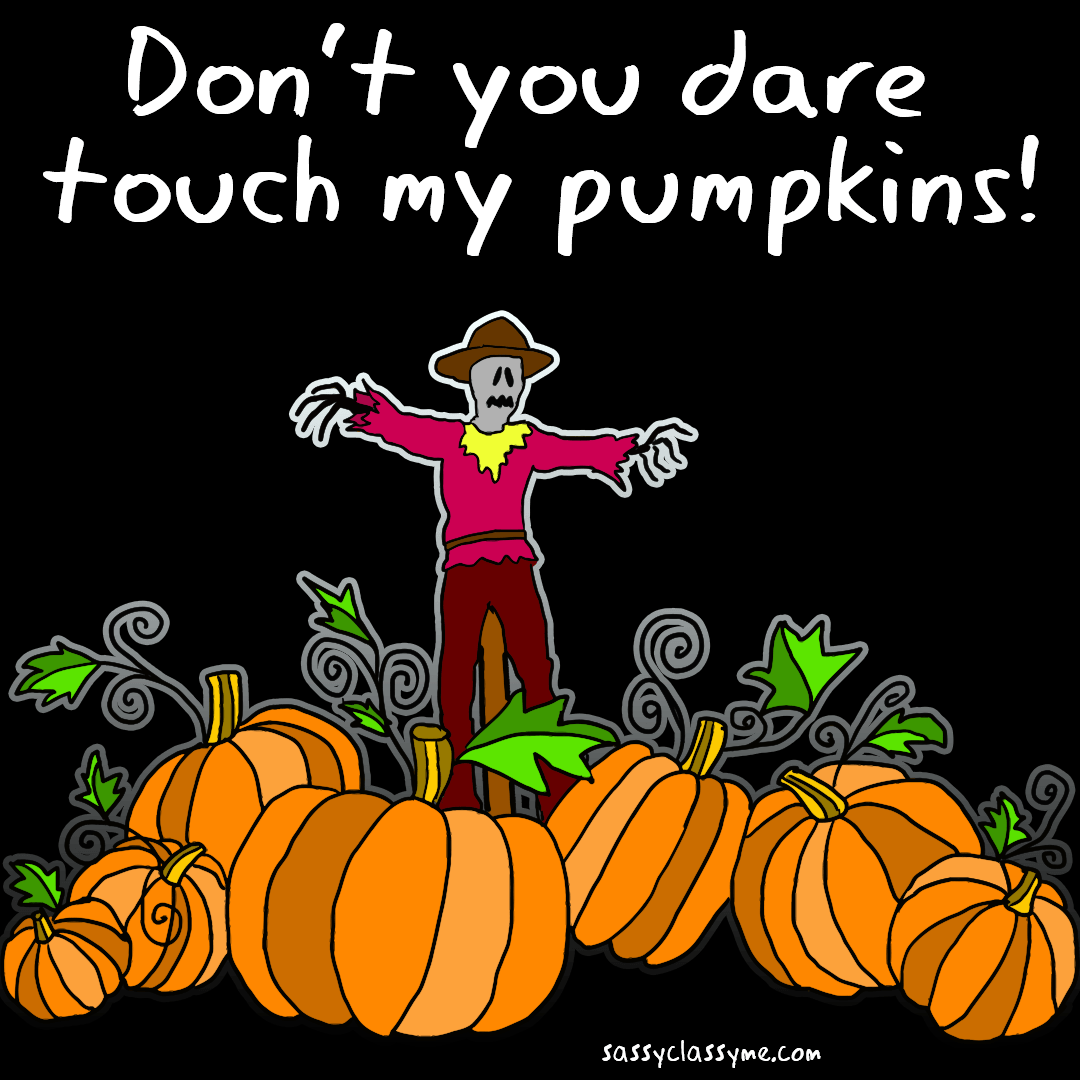 don't you dare touch my pumpkins sassyclassyme top 10 halloween memes